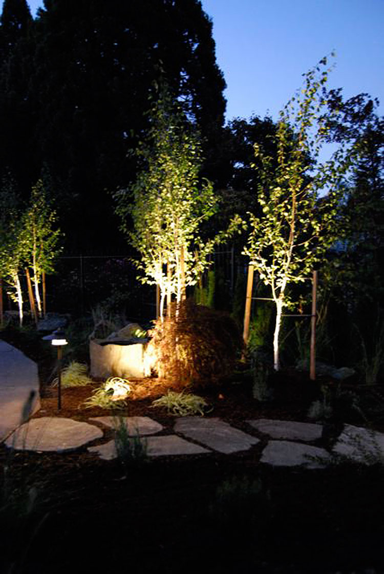 Low Voltage Outdoor Lighting Installation