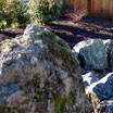 This large boulder adds to the beauty of this front yard