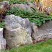 These large boulders are perfectly placed to create a wall holding in the lush vegetation