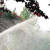 Sprinkler Systems and Water Conservation in Oregon