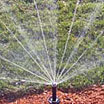 Sprinkler Systems and Water Conservation in Eugene Oregon and surrounding areas