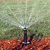 Sprinkler Systems and Water Conservation